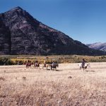 waterton lakes national park trail ride