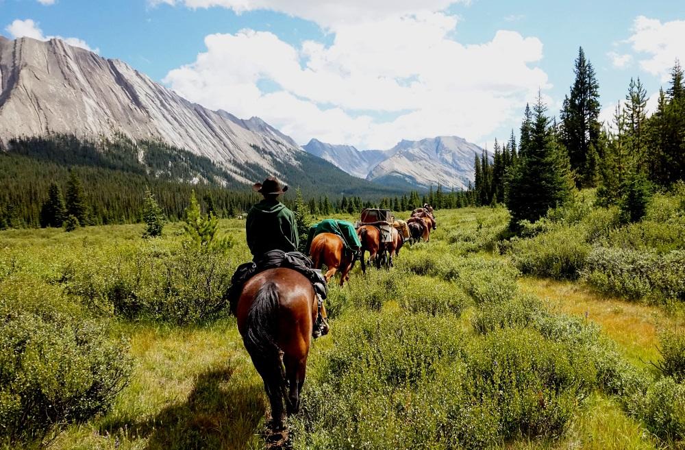 McKenzie's Trails West