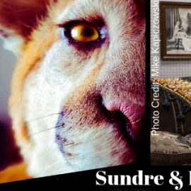 FB_Sundre-Museum2021
